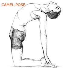 Camel Pose or Ustrasana