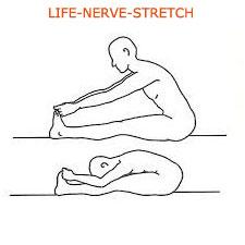 life-nerve-stretch