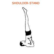 shoulder stand or Sarvangasana